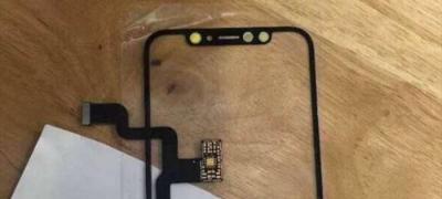 1000-iphone-8-photos-fuitees.jpg